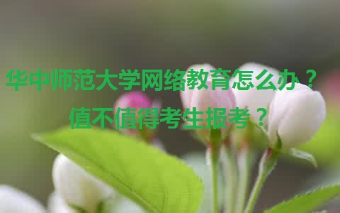 华中师范大学的网络教育怎么样?值得报考吗?