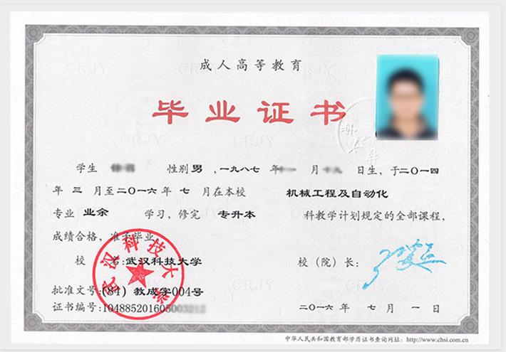 成人教育毕业证样本